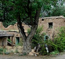 Old Taos  Adobe Ruin by Diane Rodriguez