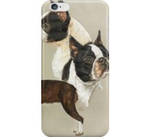 Boston Terrier iPhone Case/Skin