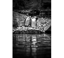 Reflecting on Friendship Photographic Print