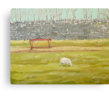 Drystone Wall and Sheep Canvas Print
