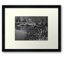 Water Cycle Framed Print
