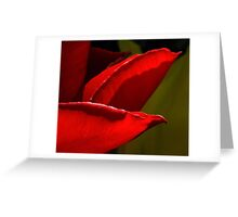 Zuzu's Petals Greeting Card