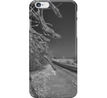 Icy Branches iPhone Case/Skin