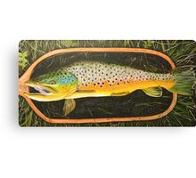 South Platte Brown Trout - Trout Painting Canvas Print