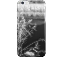 Feather Grass Monocle iPhone Case/Skin