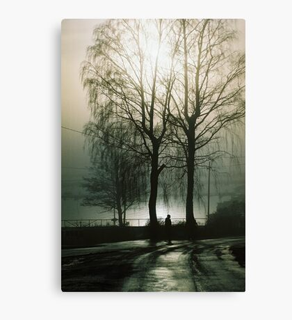 Trees in black and white  Canvas Print