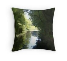 Abstract of the lake at Hardwick Throw Pillow