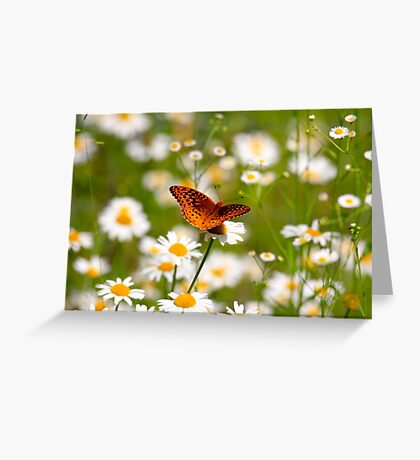 Plant Your Secret Garden Greeting Card