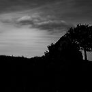 Into the dark by Alexandre Bertin