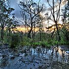 Mt Lofty late on a winter's day by Wayne England