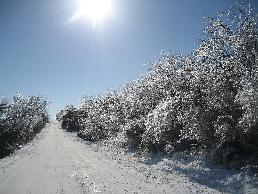 Winter Wonderland by mekea