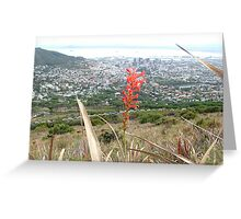 Cape Town, Western Cape, from Table mountain Greeting Card