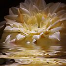 Water Flower by Agata