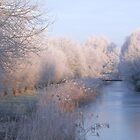 Magical Winter Wonderland by Jo Nijenhuis
