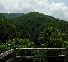 Somewhere In North Carolina ~ Part Eight by artisandelimage