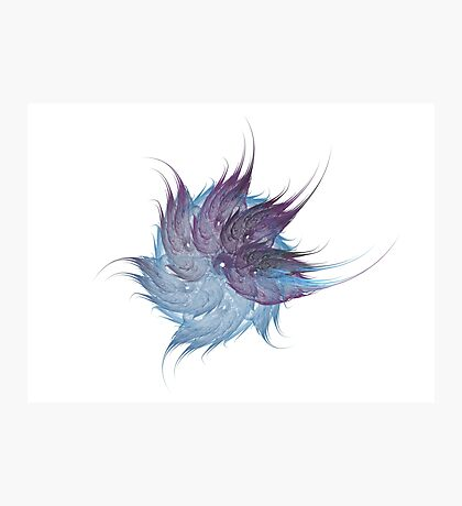 Feather Flower Photographic Print