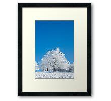 Blanc Ventron Framed Print