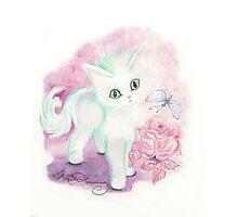 The Little Angel Kitten  Photographic Print