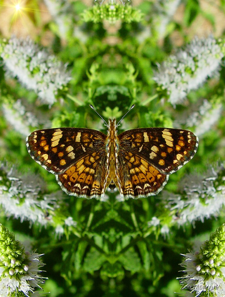 Reflections Of A Pearl Crescent by Zoe Marlowe
