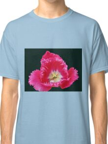 Pink Frilled Tulip on Black Background Classic T-Shirt