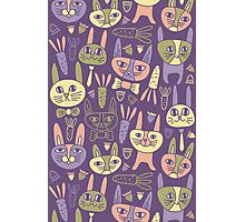 Funny Bunnies Violet Photographic Print