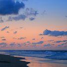 The Beach by Charles Adams