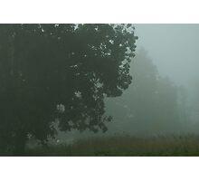 Fog 2 Photographic Print