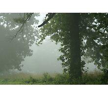 Fog 3 Photographic Print