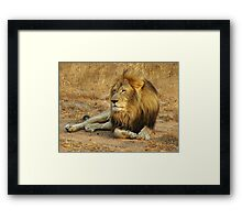 His Royal Highness Framed Print