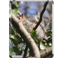 Shy Squirrel iPad Case/Skin