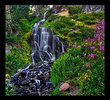 Vidae Falls by Rickcalif