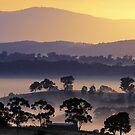 Sunrise, Kangaroo Ground, Yarra Valley. by Ern Mainka