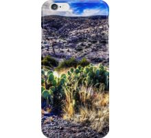 Along the Cave Creek Trail IV iPhone Case/Skin