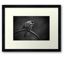 Tough Guy Framed Print