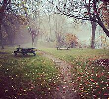 Brickyard Pond in Autumn by theatremusicetc