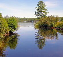Northern Ontario #3 by marchello