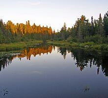 Northern Ontario #4 by marchello