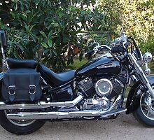 Yamaha XVS1100A Classic Cruiser by Sharon Stevens