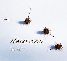 Neurons! by Alice Kahn