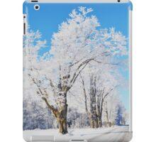 Frosted Landscape iPad Case/Skin