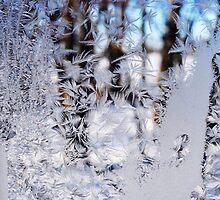 Frosted Window Landscape by JoCzech