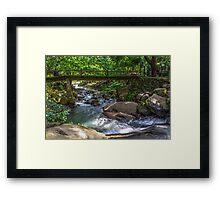 Nature Scene Framed Print