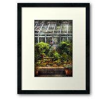 The Greenhouse II Framed Print