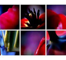 VII by Damienne Bingham