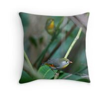 Pekin Robins II Throw Pillow