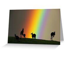 Kangaroos and Rainbow at Kangaroo Ground, Yarra Valley. Greeting Card