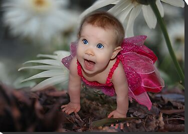 Spring Fairy by Julie Thomas