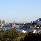 TARONGA PARK VIEW by Tracy King