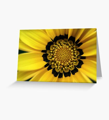 Colour Of Life XX Greeting Card