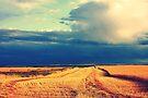 Harvest Sky by Leanna Lomanski